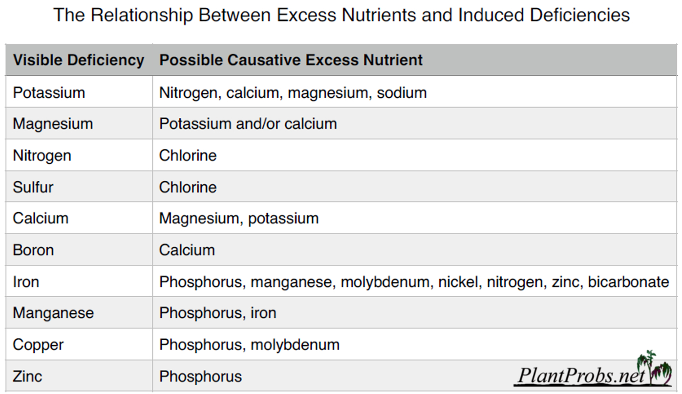 nutrient deficiencies induced by nutrient toxicity
